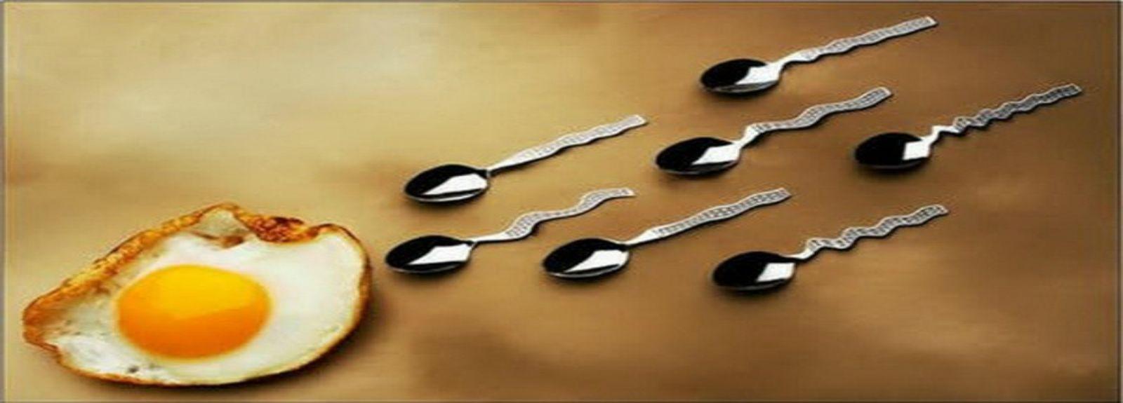 Những điều cần biết về tinh trùng ở nam giới
