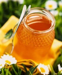 mật ong, sữa ong chúa